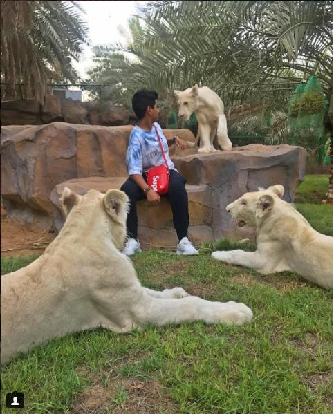 Cũng như bao cậu ấm trong hội con nhà giàu, Rashed Saif Belhasa A.K.A cũng thích chơi với thú cưng như thế này. Chiếc túi đeo chéo size nhỏ được xem như bảo bối là phụ kiện phù hợp cho những buổi dạo chơi với thiên nhiên.