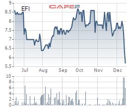 Biến động giá cổ phiếu EFI trong 6 tháng