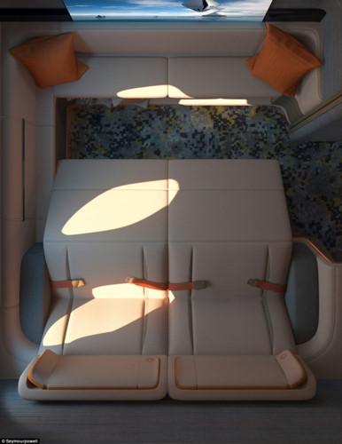 Các hãng hàng không đều đang cố gắng tìm kiếm những mẫu thiết kế làm sao cho khách hàng ở khoang hạngnhất có thể có được chỗ ngồi thoải mái và phong cách để hút khách VIP.