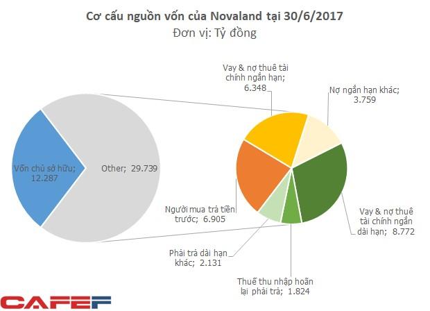 Nguồn: Báo cáo Tài chính hợp nhất Quý II/2017 của Tập đoàn Novaland
