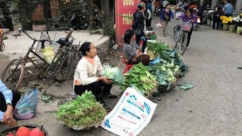 Đối với người bán hàng, giá rau tuy có giảm nhưng dễ bán. Ảnh: Đỗ Hợp