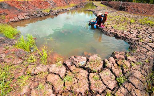 Biến đổi khí hậu gây ảnh hưởng cuộc sống nhiều người dân