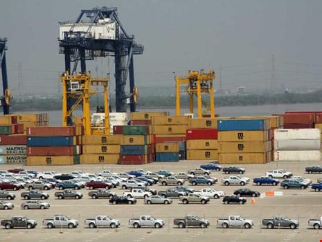 Các công ty nhập khẩu ô tô thiệt hại lớn vì chờ quy định mới. Trong ảnh: Ô tô nhập về tại cảng Hiệp Phước, TP.HCM. Ảnh: KC