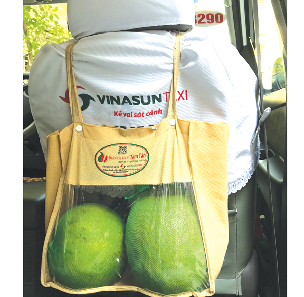 Bưởi da xanh Tam Tân bán trên xe taxi Vinasun. Ảnh: SGGP