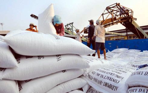 Chính sách xuất khẩu lúa gạo thời gian qua còn nhiều điểm bất cập. (Ảnh minh họa: KT)