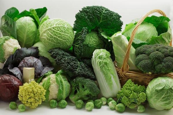Những nghiên cứu trong phòng thí nghiệm cho thấy, rau họ cải giúp điều hòa hệ enzyme phức tạp của cơ thể để ngừa ung thư (Ảnh: Internet)