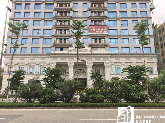 Khu căn hộ cao cấp được xây dựng với quy mô 27 tầng cao và 4 tầng hầm, nằm trên diện tích đất là 4.791 m2, tổng số 242 căn hộ.