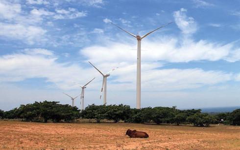 Dự án điện gió được triển khai tại tỉnh Ninh Thuận. (Ảnh minh họa: KT)