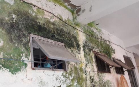 Hậu hết Nhà vệ sinh ở các tầng nhà A3 Khu chung cư đầu tuyến Sơn Trà - Điện Ngọc bị thấm, bong tróc.
