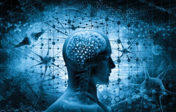 Não là bộ phận quan trọng và có cơ chế hoạt động tinh vi.