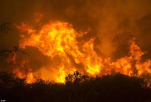 Cháy rừng dữ dội tại hạt Sonoma. Ảnh: AP