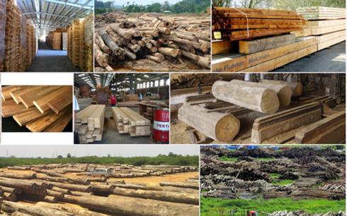 Kim ngạch xuất khẩu gỗ tăng cao trong 3 quý đầu năm 2017 (Ảnh minh họa: KT)
