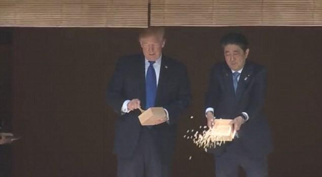 Dân mạng tranh cãi vì màn cho cá ăn của ông Trump và ông Abe - Ảnh 1.