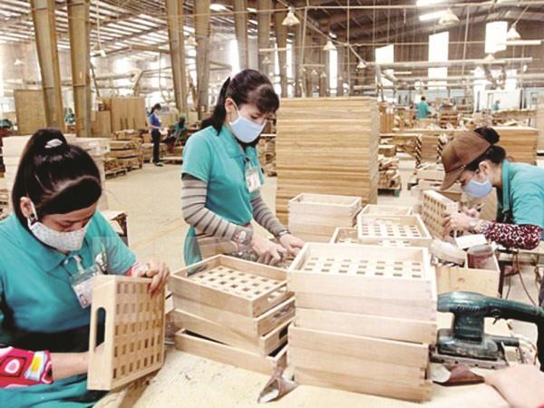 dfdXuất khẩu gỗ của Việt Nam sang các thị trường lớn còn nhiều tiềm năng. Ảnh: S.T.