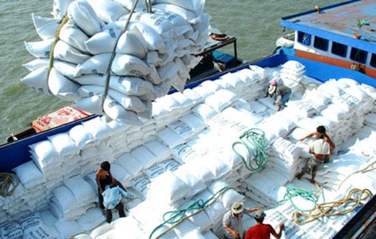 DN mong muốn được tham gia xuất khẩu gạo trực tiếp.