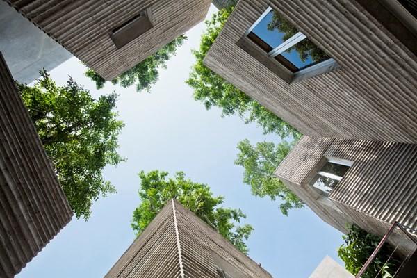 Nhờ cây Banyan, một loài cổ thụ với tán rộng và có độ che phủ tốt giúp ngôi nhà luôn râm mát và thoáng đãng. Với cấu trúc tạo ra những khoảng trống, các khu vườn nhỏ bên dưới cũng được tạo ra.