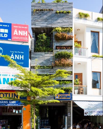 Nằm tại trung tâm thành phố Đà Nẵng, ngôi nhà ống 4 tầng trông giống hệt một khu vườn thẳng đứng đầy cây xanh.