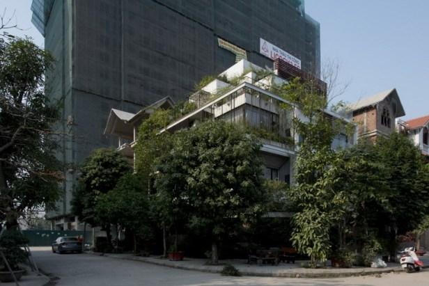 Ấn tượng đầu tiên khi nhìn thấy ngôi nhà này đó là cả một rừng cây xanh giữa lòng thủ đô.