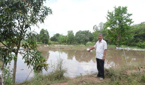 Hai ao nuôi cá tra của ông Nguyễn Hữu Nguyên đang được san lấp để trồng cây ăn trái
