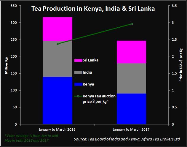 BusinessLine dẫn tin từ chuyên gia tập san Global Tea Digest, ông Rajesh Gupta cho biết sản lượng chè đen toàn cầu từ đầu năm tới nay đã giảm 21,03% so với cùng kỳ năm 2016, xuống mức 264,27 triệu kg, từ mức 334,66 triệu kg.