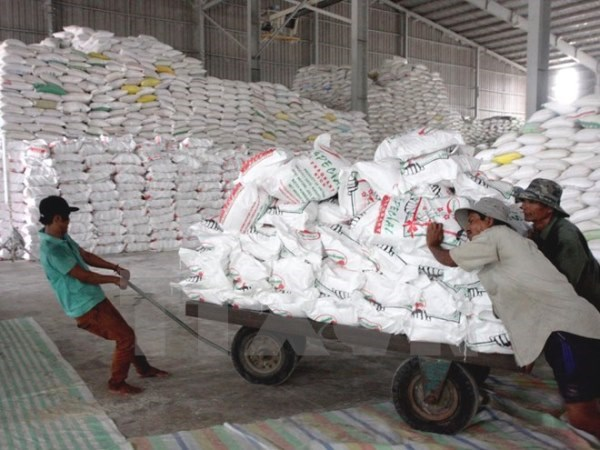 Vận chuyển gạo xuất khẩu tại Công ty lương thực Long An. (Ảnh: Đình Huệ/TTXVN)