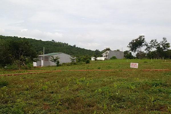 Hàng trăm người dân ngậm trái đắng khi mua đất của bà Lựu.