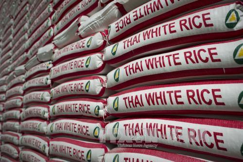Gạo được đóng gói chờ xuất khẩu tại một nhà máy ở Bangkok, Thailand. Ảnh: AFP/TTXVN