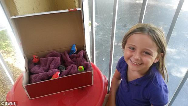 Cô con gái Alyssa đáng yêu đặt đồ chơi trong tổ cho Gracie.