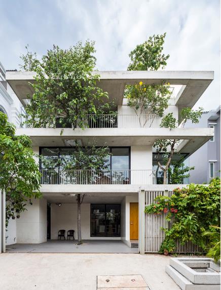 Ngôi nhà 3 tầng lạ mắt và nổi bật giữa khu dân cư với cây xanh mọc lên từ khắp mọi nơi trong nhà.
