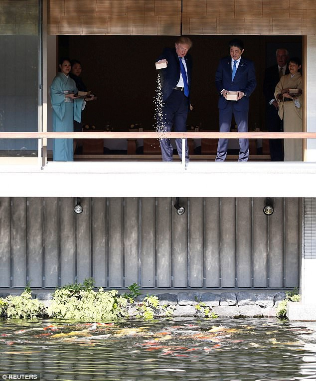 Dân mạng tranh cãi vì màn cho cá ăn của ông Trump và ông Abe - Ảnh 2.