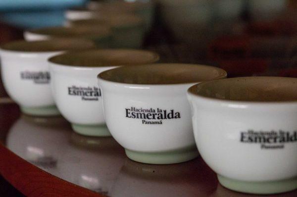 Panama Geisha có xuất xứ từ trại cà phê Hacienda La Esmeralda.