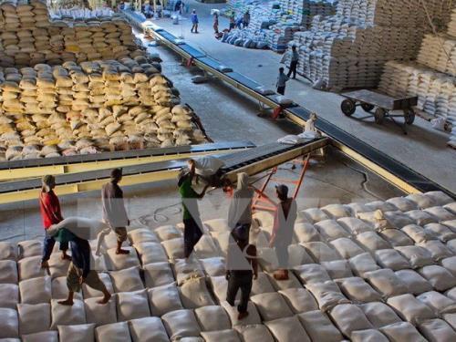 Xuất khẩu gạo năm 2017 của Việt Nam tăng mạnh. Ảnh: TTXVN