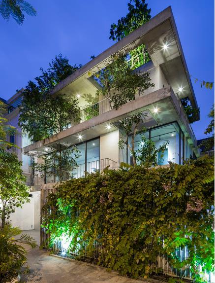 Ngôi nhà cây xanh đẹp lung linh dưới ánh điện khi về đêm.