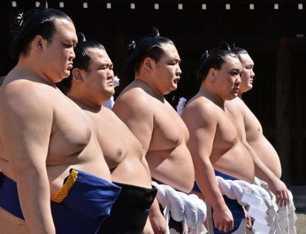 Các võ sĩ sumo phải trải qua quá trình huấn luyện rất gian khổ.