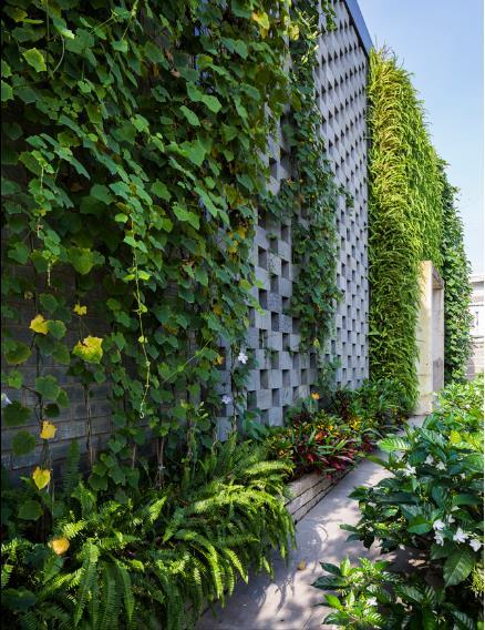 Tường đá ong được thiết kế nơi mặt tiền giúp cho gió tự nhiên dễ dàng lùa sâu vào bên trong văn phòng.