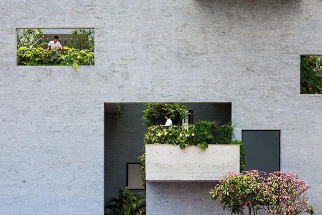 Với những mảnh vườn xinh xắn ở ban công, bệ cửa sổ hay sân thượng, sống trong ngôi nhà này không khác gì được nghỉ dưỡng trong một khu resort.