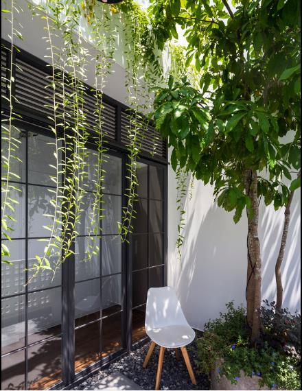 Hai cây lộc vừng và một giàn dây leo rũ xuống tạo nên một màn che thiên nhiên, giảm nắng nóng và tạo điểm nhấn bắt mắt cho ngôi nhà.