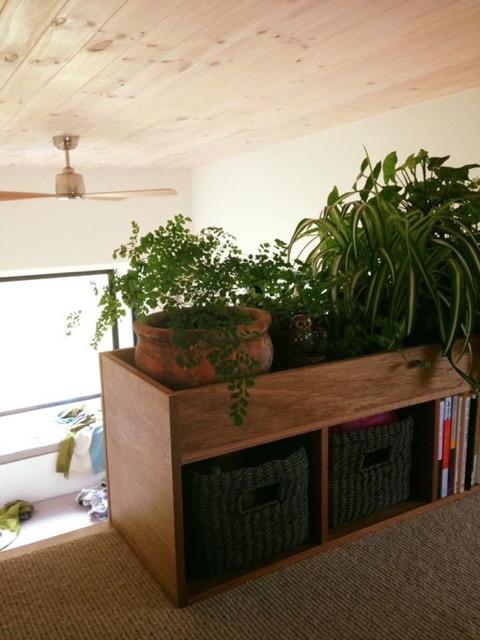 Và một kệ gỗ đa năng với bên trên là cây cảnh và dưới dùng làm giá sách và tủ đựng đồ cho chủ nhà.