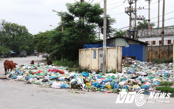 Việc chặn xe rác vào bãi tập kết khiến rác thải ùn ứ trên các tuyến đường huyện Thủy Nguyên vì không có đơn vị nào thu gom. Trong ảnh là một điểm tập kết rác ở thị trấn Minh Đức.