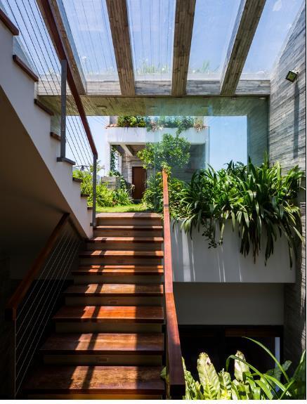 Tầng thượng của ngôi nhà được thiết kế đặc biệt với một vườn cây xanh mướt.