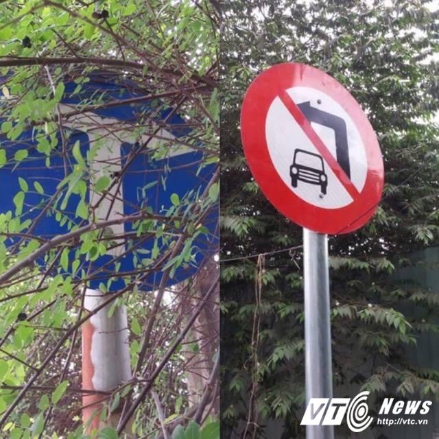Hai biển báo cách nhau 10m trên đường Bạch Đằng, một biển cho rẽ phải, rẽ trái nhưng một biển lại cấm xe ô tô rẽ trái. (Ảnh: Quang Hải)