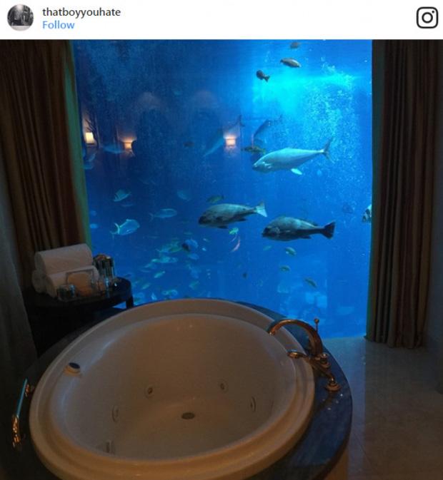 Phòng ngủ dưới thủy cung, vừa ngủ vừa ngắm cá. Chắc họ không nuôi cá mập đâu!