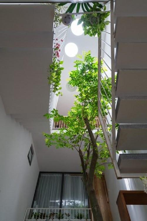 Khi thiết kế cần chú ý phương hướng nắng gió, mái che giếng trời phù hợp với điều tiết ánh sáng, chống mưa, nắng gắt vào nhà.