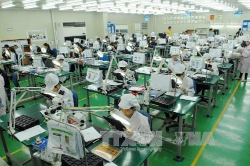 Nhiều dự báo kinh tế Việt Nam năm 2017 tích cực hơn năm 2016. Ảnh: Danh Lam-TTXVN