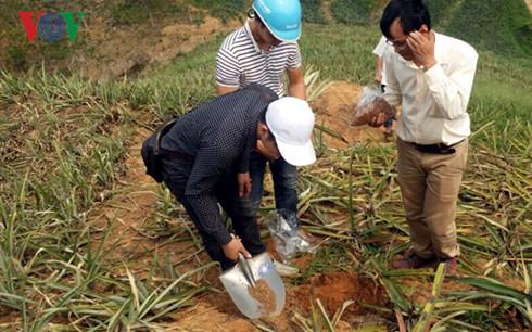 Viện Hóa học Việt Nam tiến hành lấy mẫu đất để phân tích.