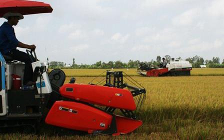 Công nghệ hóa sản xuất sẽ gia tăng lợi nhuận cho nông dân (Ảnh minh họa: KT)