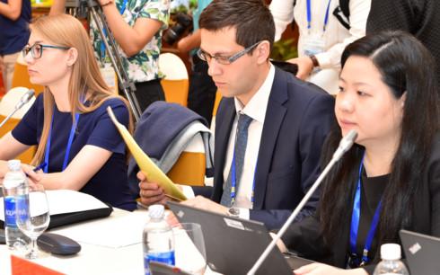 Các đại biểu tại Hội nghị Quan chức Tài chính Cao cấp APEC 2017.