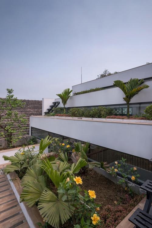 Khu vực ở và sinh hoạt của gia đình được bố trí khéo léo dọc theo độ dốc của mái nhà. Khu vực trồng trọt chính là ruộng bậc thang được bố trí trên mái.