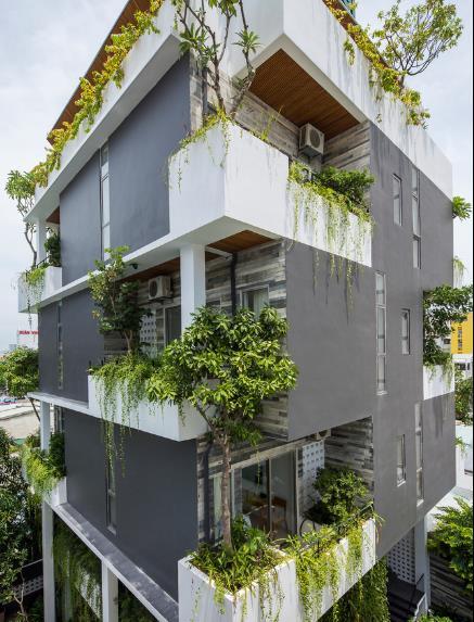 Khách sạn được thiết kế đẹp mắt gồm 6 tầng với 13 phòng nghỉ của khách. Mỗi phòng đều có ban công tràn ngập cây xanh.