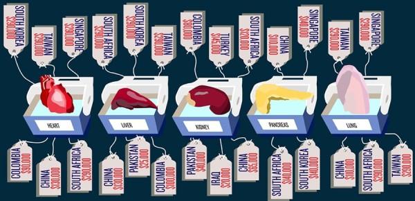 Quy trình hiến tặng và cấy ghép cũng bị chính quyền tại Mỹ kiểm soát rất gắt gao.